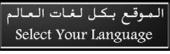 Website languages